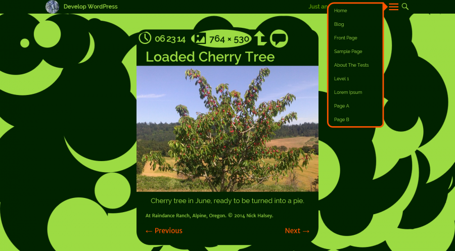 Green and black colors, circular mode, and menu toggled open on a single-image page.